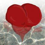 Doze Conselhos para você não ter um infarto